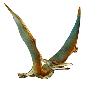 Dac - Your Pterosaur for Backup Information